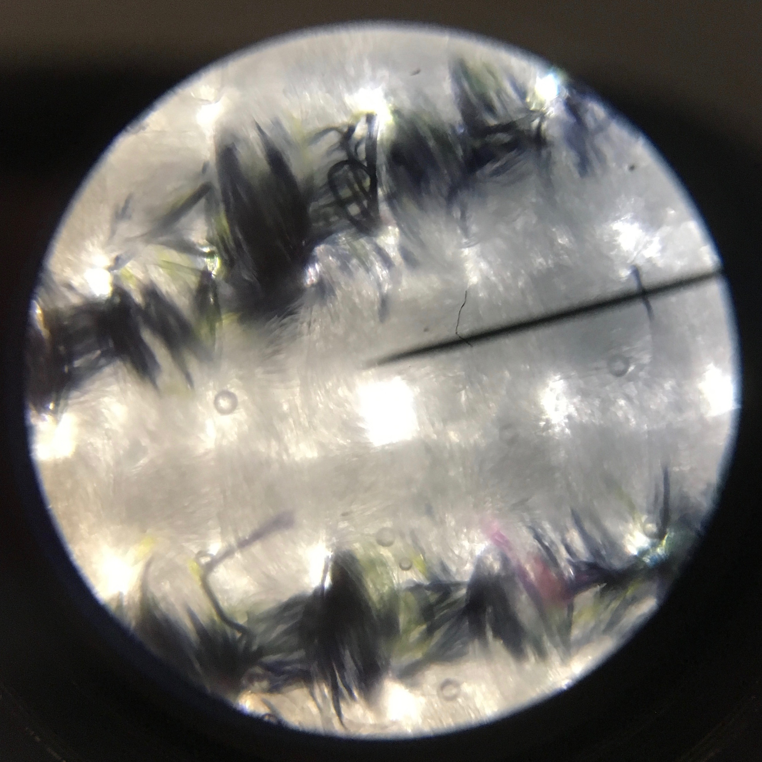 Microscope image of Nuppu print company cotton.
