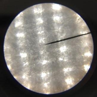 Microscope image of polkadot poplin.