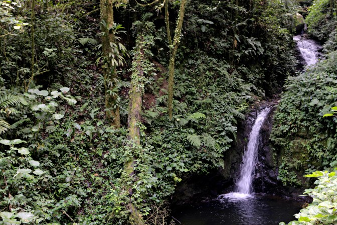 Monteverde Waterfalls