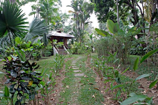 Bosque Del Cabo Costa Rica - JoeBaur