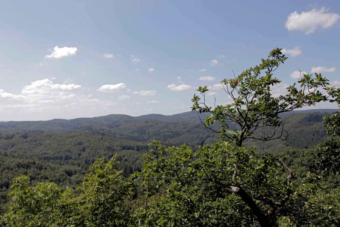 View from Wartburg Castle in Eisenach, Germany