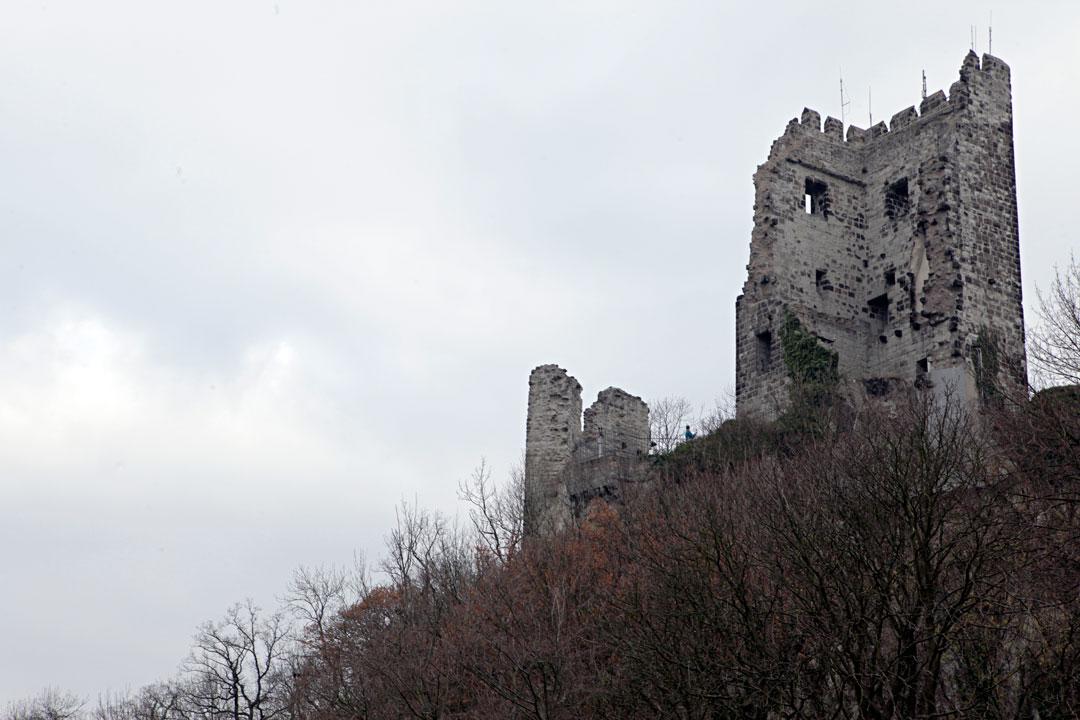 drachenfels-ruins-siebengebirge-germany