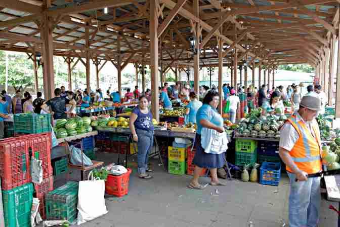 Farmers market in Ciudad Colón.