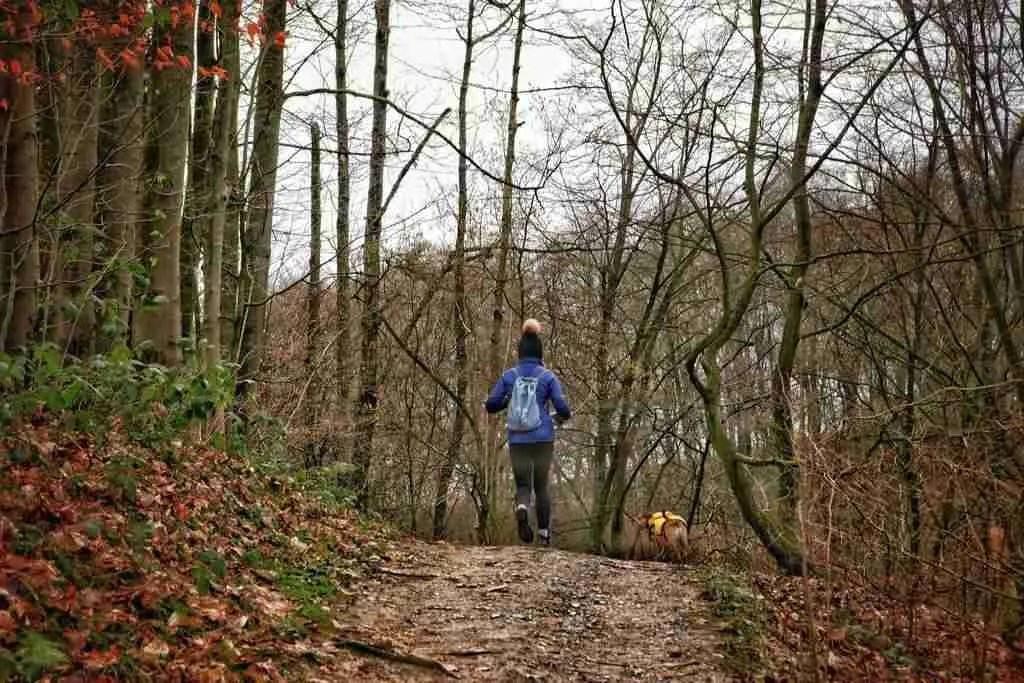 Hiking on the Neanderlandsteig in Germany