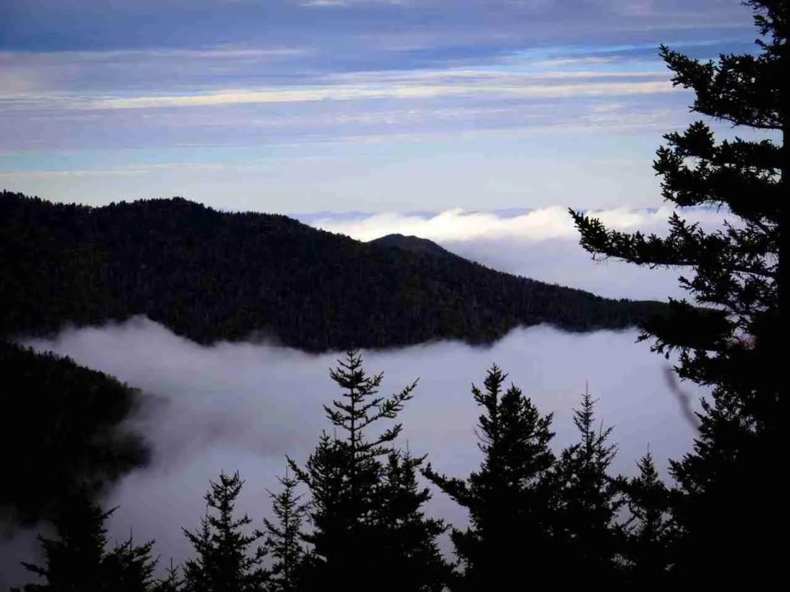 Maddron Bald Smoky Mountains National Park