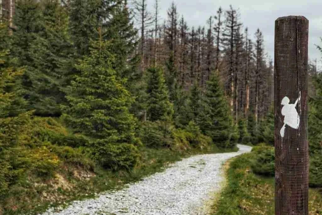 Harz Mountains Harzer-Hexen-Steig Hiking Trail in Germany