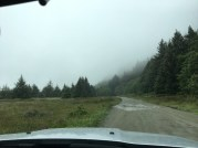 Drive to Fern Canyon