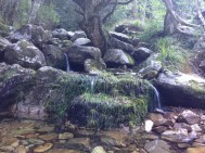 Jonkershoek - A Secluded Ravine