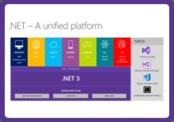 .Net 5 RC1