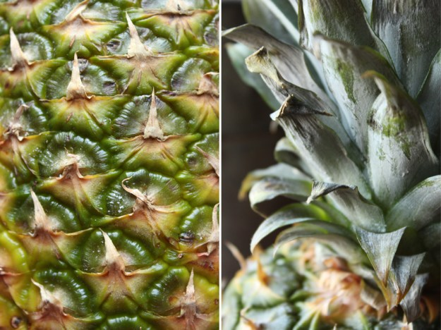 Pineapple Textures