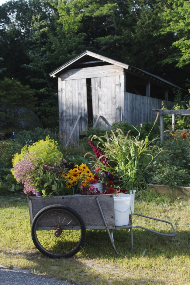 Maine Flower Cart