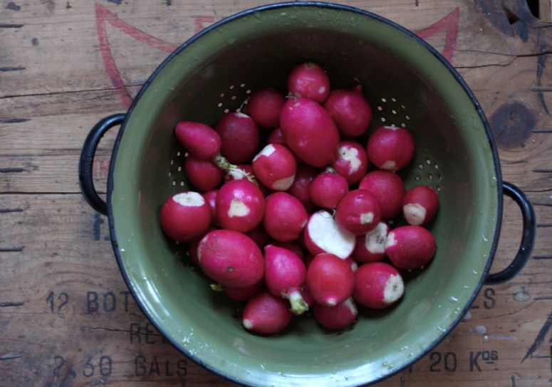 Juice of the Week: Radishes & Fruit