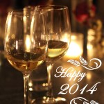 2013: A Year in Review + Happy New Year!