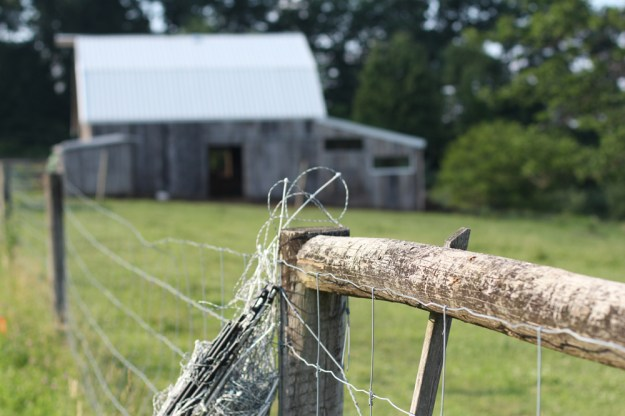 Fence Coil and Barn