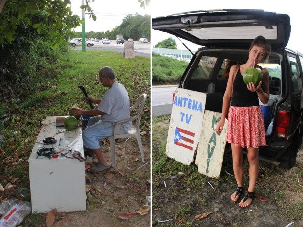 Quelcy and the Coconut Stand