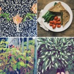 Instagram Lately: It's Summer!