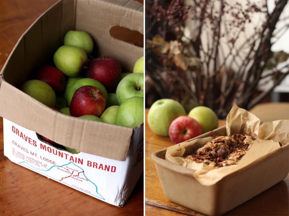 Spiced Apple Oat Bread // www.WithTheGrains.com