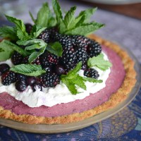 Frozen Blueberry Tart with Lavender Coconut Crust (Gluten-Free & Vegan)