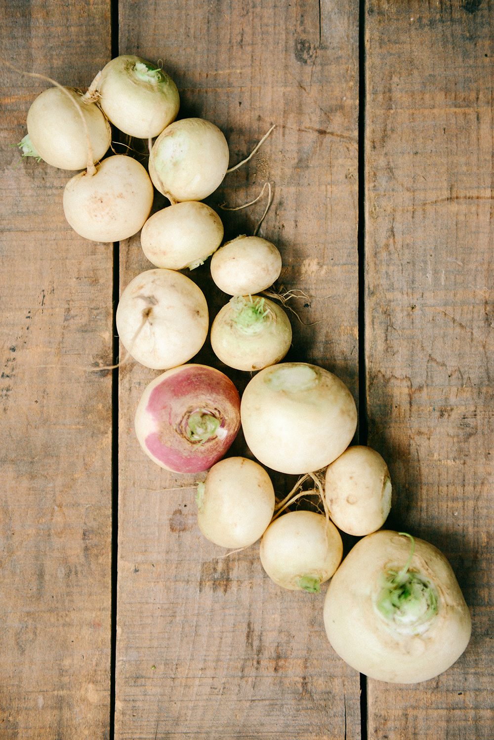Turnip Chips and Dip // www. WithTheGrains.com