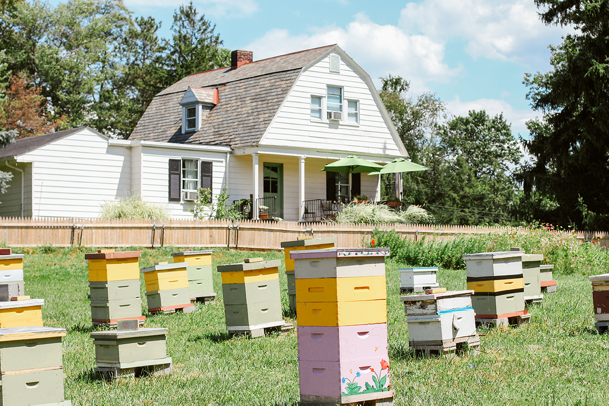 A Gathering of Beekeepers