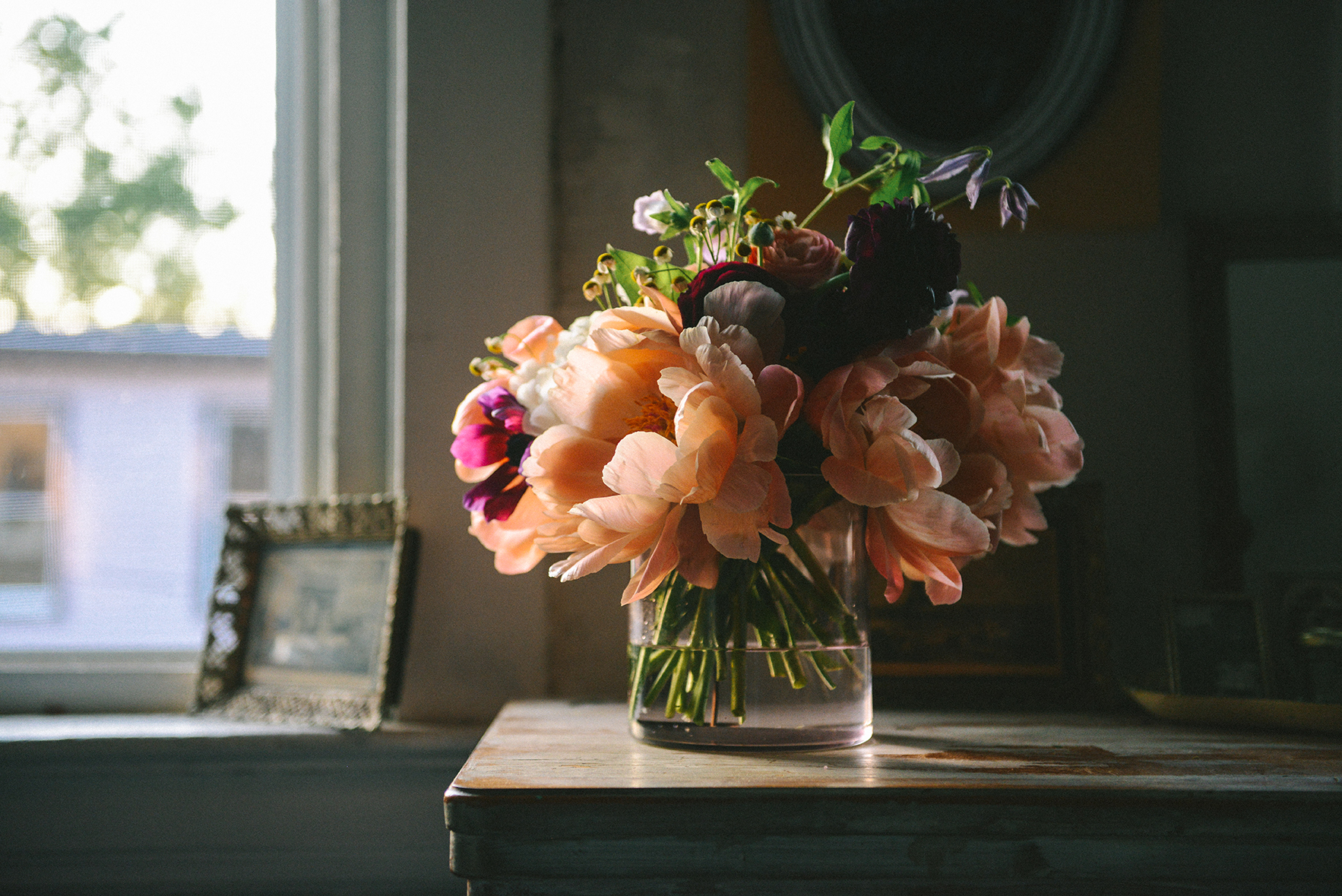 Spring Blooms: A Dose of Beauty for You