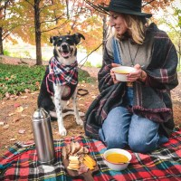 Curry Pumpkin Soup for a Fall Picnic (Gluten Free, Vegan Option)