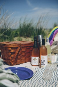Vegan Beach Picnic // www.WithTheGrains.com