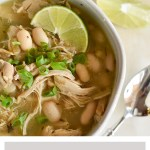 Instant Pot Salsa Verde Chicken Soup