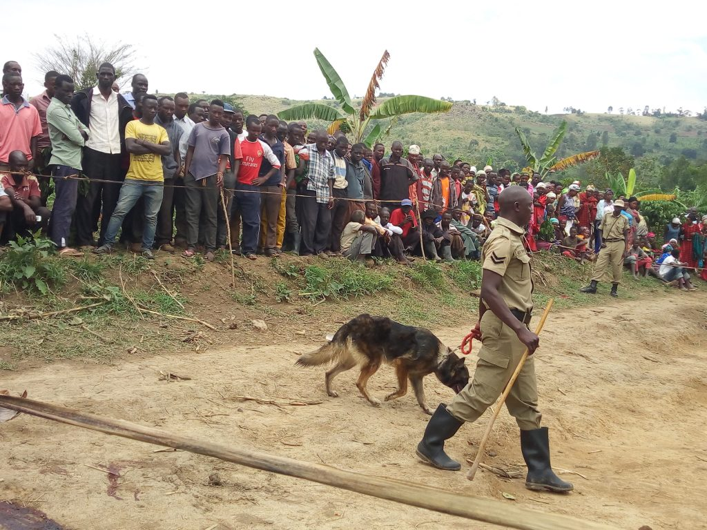 Police officer uses a sniffer dog to trace the machete wielding assailants who killed two family members in Kagamba Sub County ,Rakai District late 2018