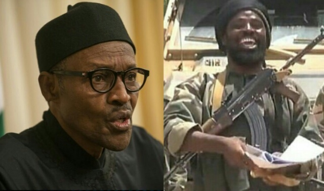 Boko Haram to Buhari: Return to Borno, face our wrath