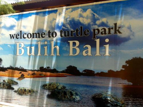 Turtle Island Bulih Bali