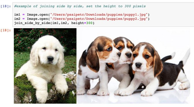วิทย์ม.ต้น: ใช้ Pillow ใน Python รวมภาพเข้าด้วยกัน