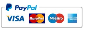 paypal-payment-icon