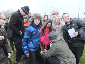 planting trees witton