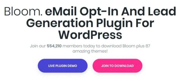 Bloom - One of the Best WordPress Popup Plugins
