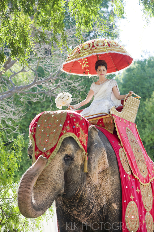 Innovative entry ideas for the Indian Bride | Ride in on an elephant | Curated by Witty vOWs