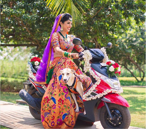 Dog wedding proposal | Indian wedding dog ideas | Save the date with dog | Save the date video Mitali and Ali #Mitali wedding by wedding Nama | Indian bride and her dog at the wedding | pet wedding | wedding with dog |Indain bride and dog in matching clothes