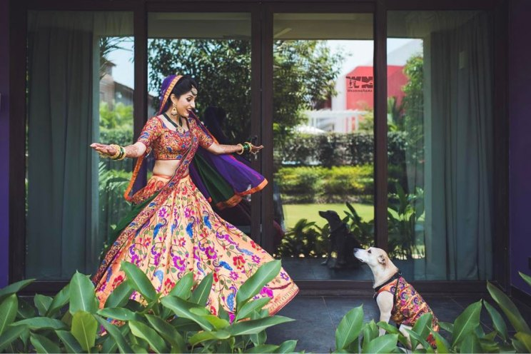 Dog wedding proposal | Indian wedding dog ideas | Save the date with dog | Save the date video Mitali and Ali #Mitali wedding by wedding Nama | Indian bride and her dog at the wedding | pet wedding | wedding with dog |Indain bride and dog in matching clothes | Indian bride twirling with her dog