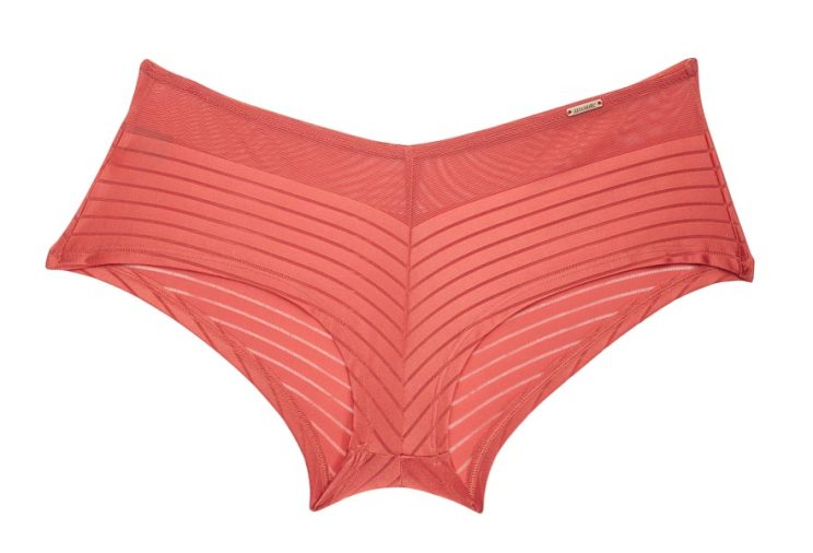 Amante lingerie - Innerwear secrets for the Indian girl | bride's essentials | pink boy short panties