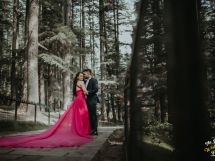 Pre Wedding shoot in Manali with a stunning trail gown