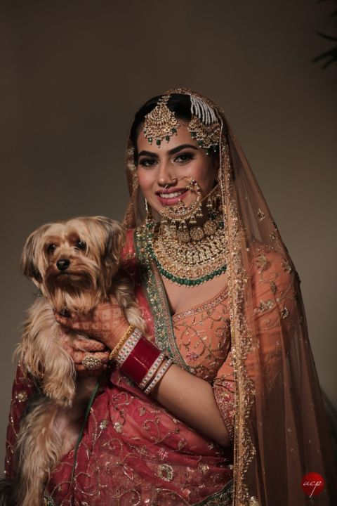 indian bride posing with her pet dog