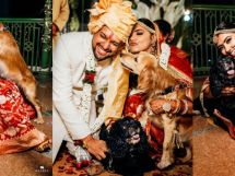 Pratha & Sushant's Happily ever after
