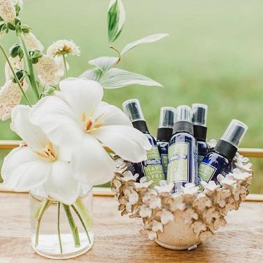 Spray sanitizers | Sanitizing station