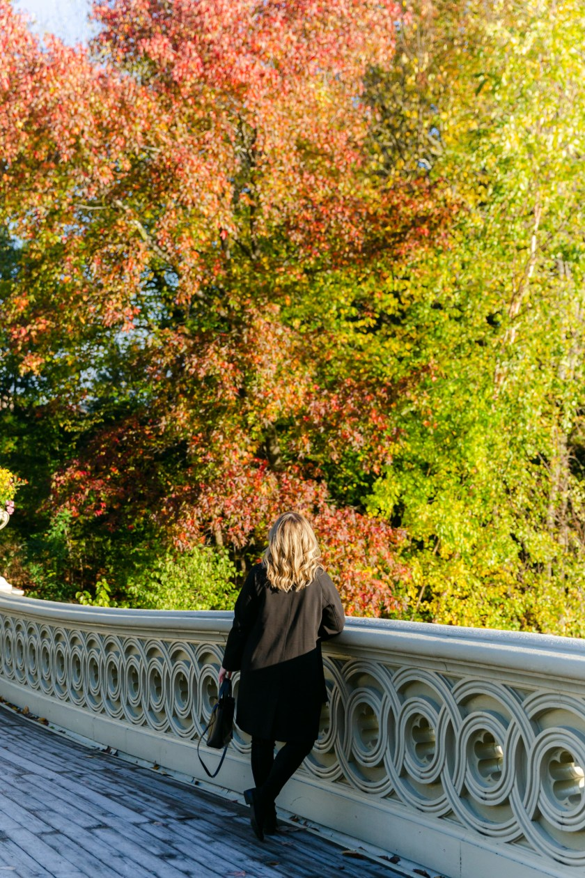Fall in Central Park I wit & whimsy