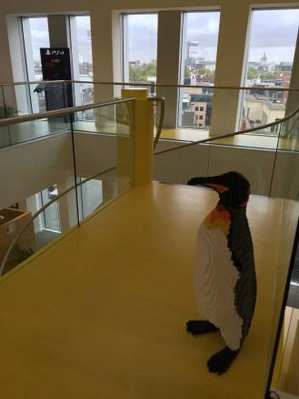 Hi penguin!