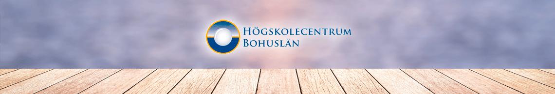 HCB E-handelsutvecklare