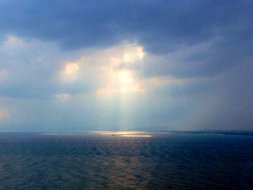 海上のこもれ日_s