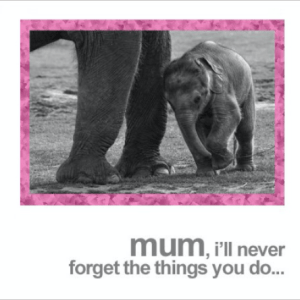 Mum Elephant and Baby Greeting Card