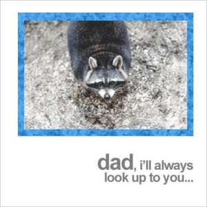 Racoon Father's Day Card
