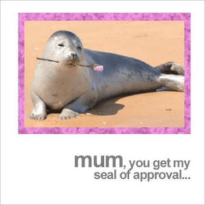 Seal of Approval Mum Greeting Card
